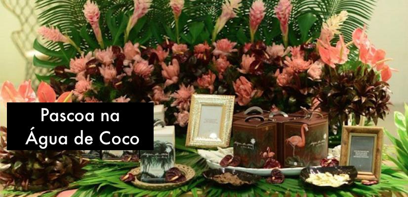 Ovos Lia Quindere para Agua de Coco