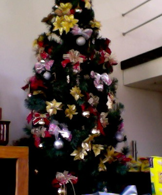 Reflexões de Natal