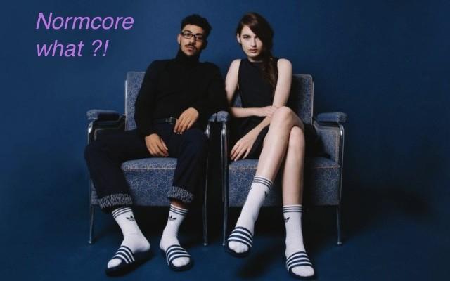 A moda agora é Normcore !