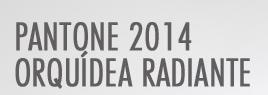 Pantone 2014 – Orquidea radiante